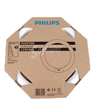 Philips tubo circular fluorescente tl e 32w 865 c mpralo for Tubo fluorescente circular 32w