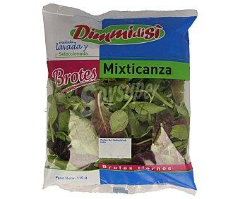 Dimmidisi Mezcla de brotes de lechuga verde y rojo, rúcula, canónigos y espinaca baby 110 gramos
