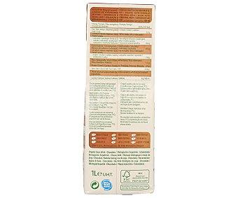 Provamel Bebida de soja ecológica con sabor a chocolate santiveri 1 litro