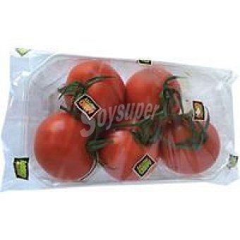 Tomate en rama Bandeja 500 g