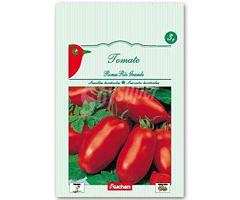 Auchan Semillas para sembrar tomates de la variedad Roma Rio Grande Semillas Tomate Roma