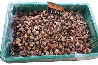Canailla congelada cocida  A granel mínimo 250 g (peso aproximado)