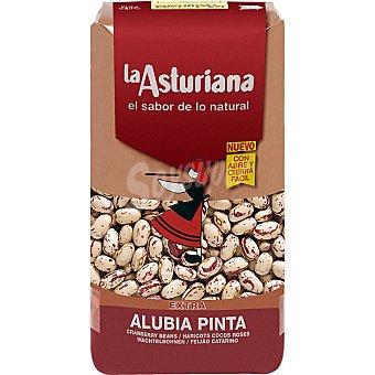 La Asturiana Alubia pinta agarbanzada Paquete 500 g