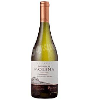 Castillo de Molina Vino de Chile blanco chardonnay 75 cl