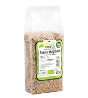 Ecocesta Avena grano bio 500 g