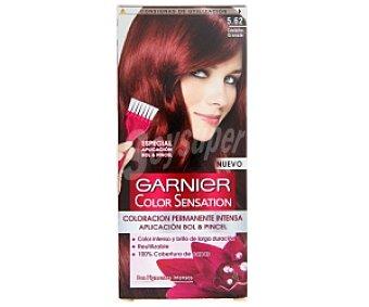 Color Sensation Garnier Tinte castaño granate Nº 5,62 1 Unidad