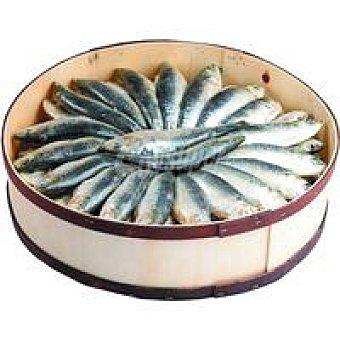 Tabal de 80 sardinas saladas Caja