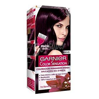 Color Sensation Garnier Coloración Permanente nº 3,16 Violín Intenso 1 ud