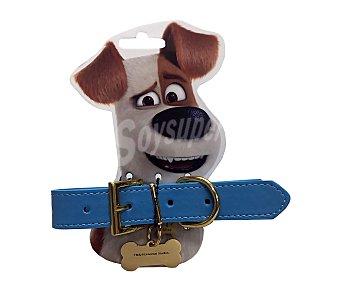 Mascotas Collar con chapa identificativa Max Talla M 2