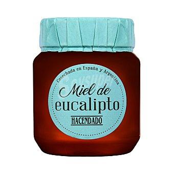Hacendado Miel de eucalipto  Tarro 450 g