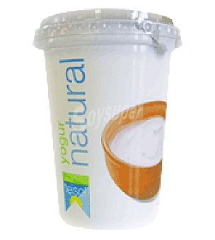 Teisol Yogur natural 500 g