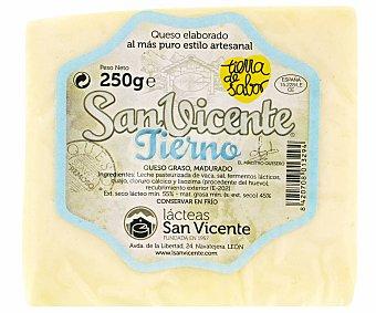 SAN VICENTE Queso Tierno Vaca 250 Gramos