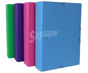 Grafoplas Caja de proyectos de diferentes colores, con lomo de 7 centímetros y cierre de gomas grafoplas. Este producto dispone de distintos modelos o colores. Se venden por separado SE surtirán según existencias