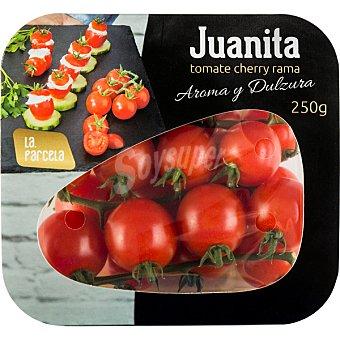 Juanita Tomate cherry rama aroma y dulzura  tarrina 250 g