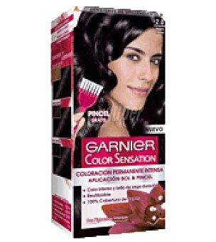 Color Sensation Garnier Tinte tono nº 2 1 ud