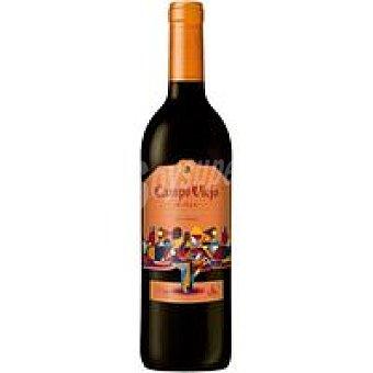 Campo Viejo Vino Tinto Reserva Rioja Art Series Botella 75 cl