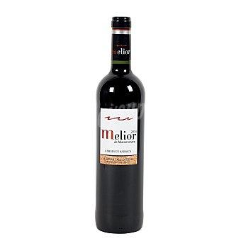 Melior Vino tinto tempranillo DO Ribera del Duero de Bodegas Matarromera Botella de 75 centilitros