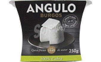 Angulo QUESO FRESCO CABRA 250 GRS