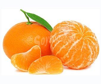 ALCAMPO PRODUCCIÓN CONTROLADA Mandarinas Malla de 2 kg