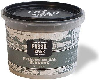 Fossil River Petalos de sal de Salina de la Fortuna Tarrina 60 g