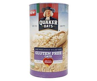 Quaker Copos de avena, sin gluten 510 gr
