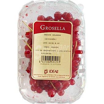 FRAGOLINA Grosella Tarrina 125 g