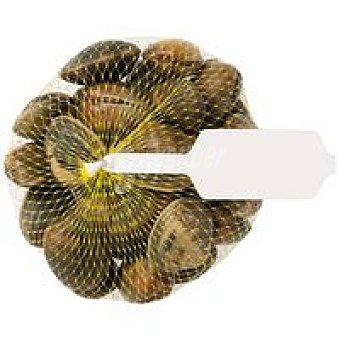 Almeja Bolsa 1 kg