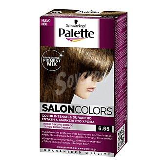 Palette Tinte Salón Colors 6,65 Rubio Oscuro Dorado 1 ud