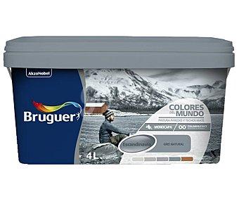 Bruguer Bote de 4l. de pintura plástica monocapa gris Escandinavia natural Colores del mundo Colores del mundo