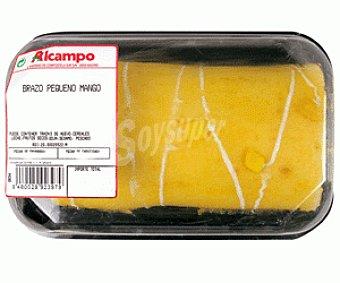 PASTELES Brazo Pequeño Mango