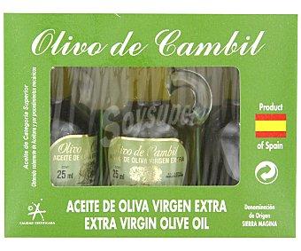 Olivo de cambil Aceite de oliva virgen extra Botella de cristal de 25 ml. 3 ud