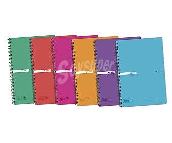 Enri Cuaderno de tamaño DIN A4, con cuadricula de 4x4 milímetros, 80 hojas de , tapas de polipropileno y encuadernación con espiral metálica ENRI. Este producto dispone de distintos modelos o colores. Se venden por separado SE SURTIRÁN SEGÚN EXISTENCIAS 70 gramos