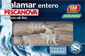 Pescanova Calamar entero Estuche 1 kg neto escurrido