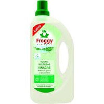 FROGGY Limpiahogar Vinagre 1L