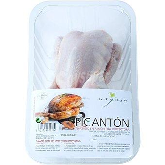 Urgasa Picantón 1 unidad ( 450 g )