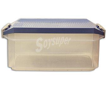 TATAY Caja de ordenación multiusos con tapa de pláctico color azul lavanda, 4,5 litros 1 Unidad