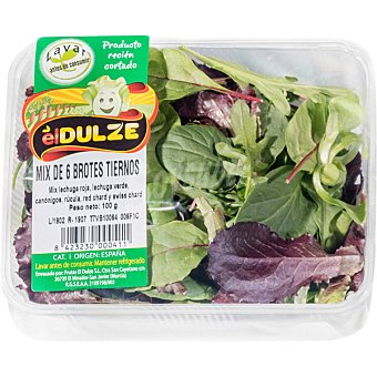 DULZE mix de brotes tiernos Tarrina 100 g