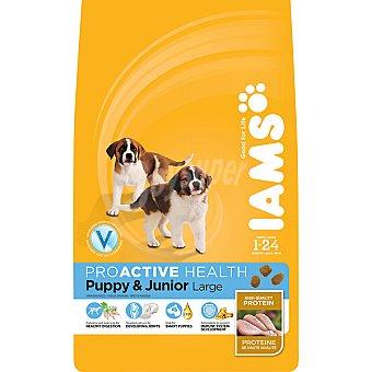 IAMS PROACTIVE NUTRITION Puppy & Junior alimento completo para perros de 1-24 meses de razas grandes con pollo  bolsa 12 kg