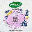 Bio postre de soja ecológico sabor arándanos envase 500 g 4x125g Provamel