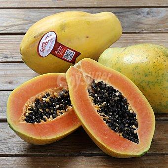 Papaya Malla de 500 g peso aprox.