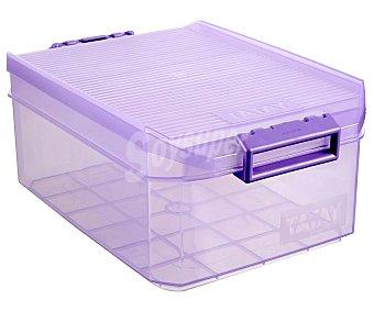 Tatay Caja de ordenación multiúsos translúcida con tapa, 4, litros, tatay