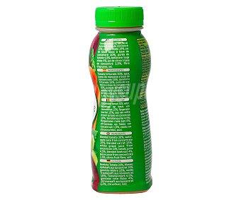 SMOOTHIE Bebida multihortalizas, a base de tomate triturado, zumo de manzana y zanahoria triturada 250 mililitros