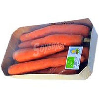 Zanahoria ecológica Bolsa 600 g