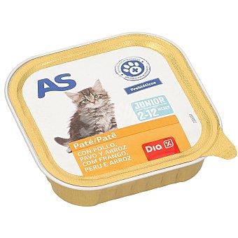 AS Alimento para gatos junior pollo/pavo Tarro 100 g