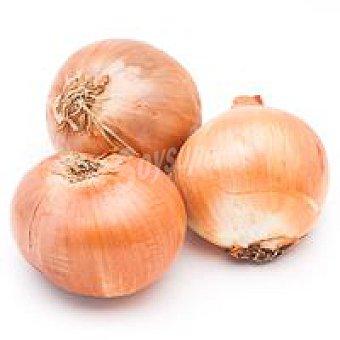 Cebolla ecológica 1 kg