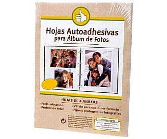 Productos Económicos Alcampo Bolsa de 10 hojas autoadhesivas para albúmes de fotos de 4 anillas alcampo