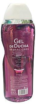 DELIPLUS Gel de baño tiernos recuerdos (perfume intenso con aceites esenciales) Botella de 750 cc