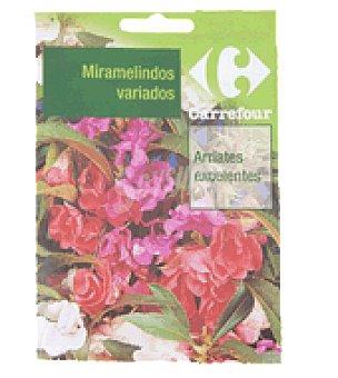 Carrefour Miramelindos