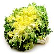 Escarola frisee tarrina 250 g Primaflor