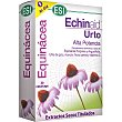 Echinaid Urto alta potencia para el funcionamiento normal del sistema inmunitario caja 30 capsulas Caja 30 capsulas ESI